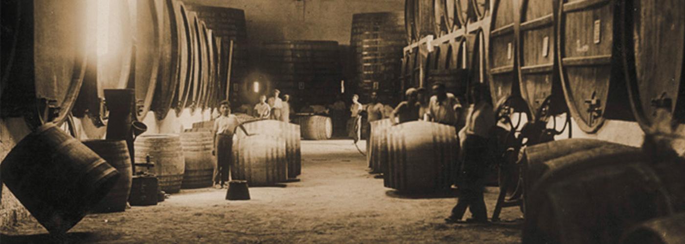 Historische wijnkelder Pellegrino